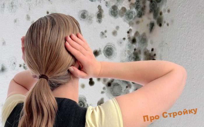 biocidy-protiv-pleseni-i-gribka-2